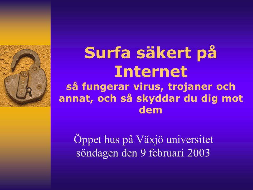 Öppet hus på Växjö universitet söndagen den 9 februari 2003
