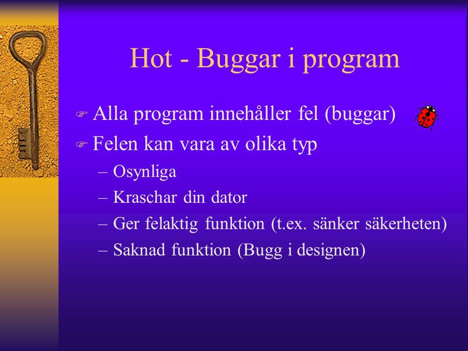 Hot - Buggar i program Alla program innehåller fel (buggar)