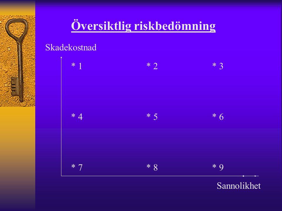 Översiktlig riskbedömning