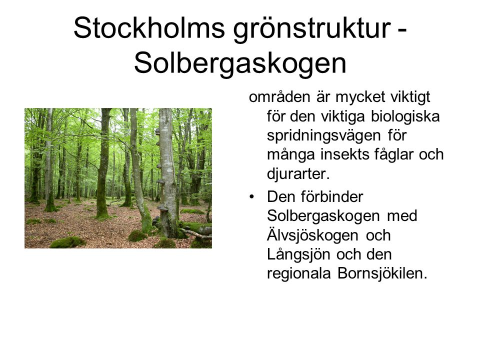 Stockholms grönstruktur -Solbergaskogen