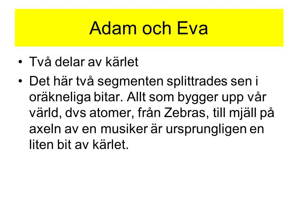 Adam och Eva Två delar av kärlet