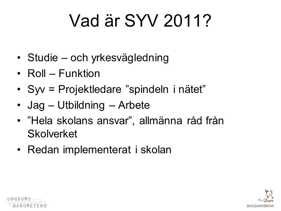 Vad är SYV 2011 Studie – och yrkesvägledning Roll – Funktion