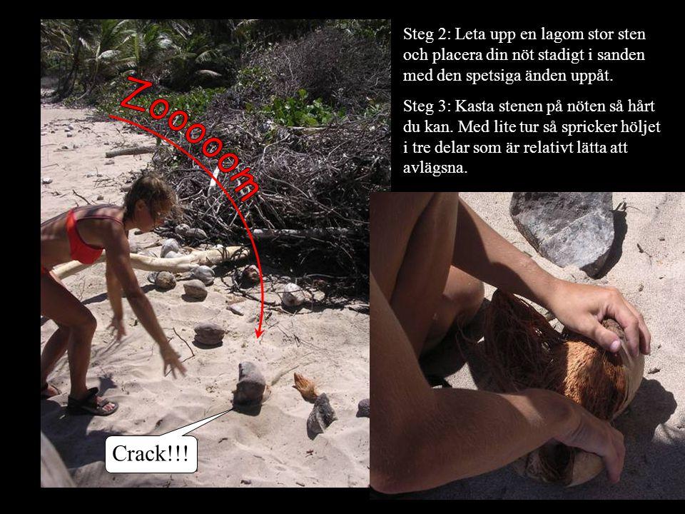 Steg 2: Leta upp en lagom stor sten och placera din nöt stadigt i sanden med den spetsiga änden uppåt.