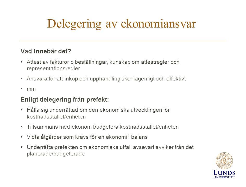 Delegering av ekonomiansvar