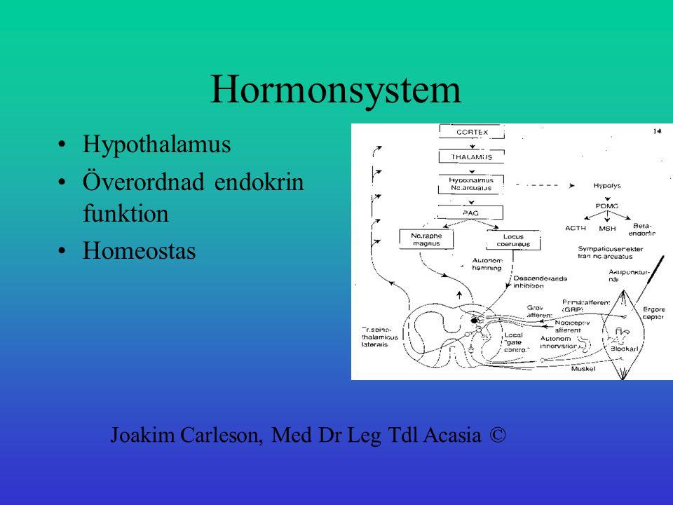Hormonsystem Hypothalamus Överordnad endokrin funktion Homeostas