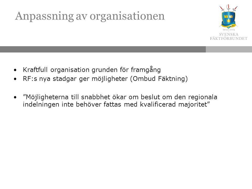 Anpassning av organisationen