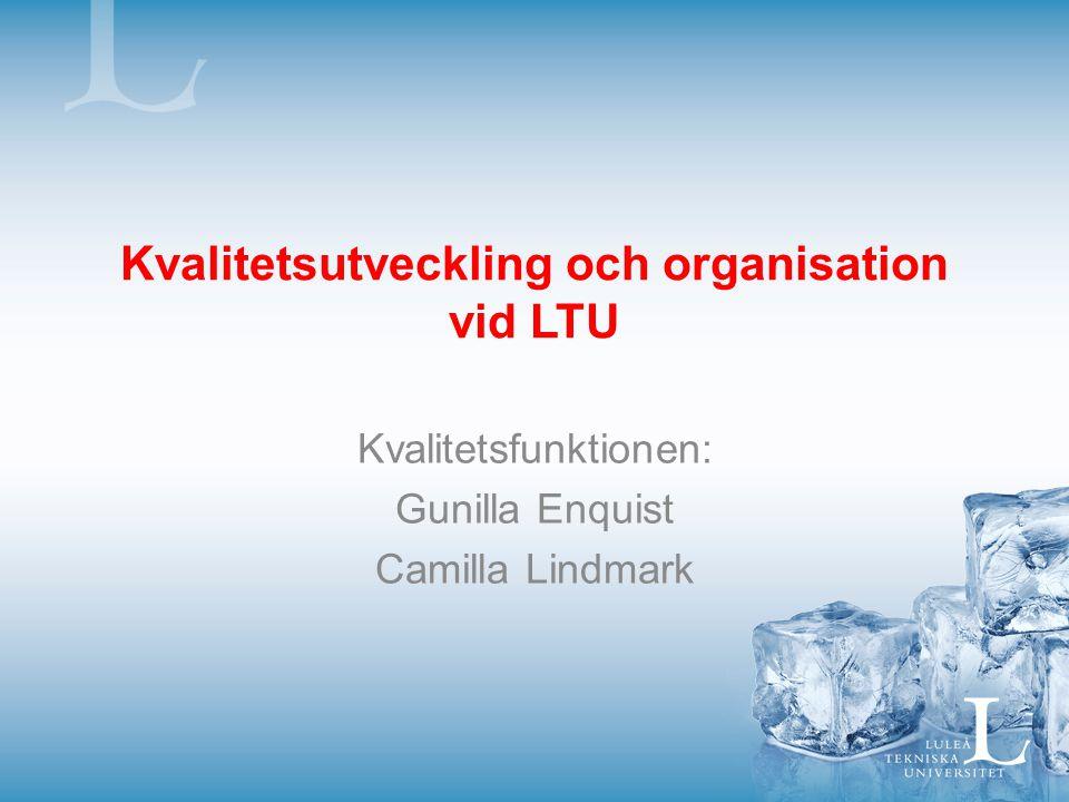 Kvalitetsutveckling och organisation vid LTU