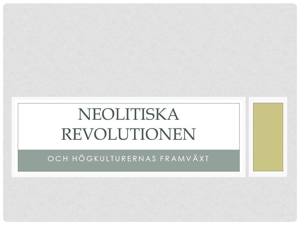 Neolitiska revolutionen