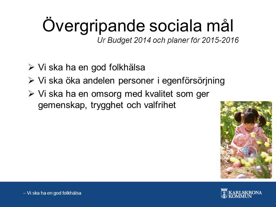 Övergripande sociala mål