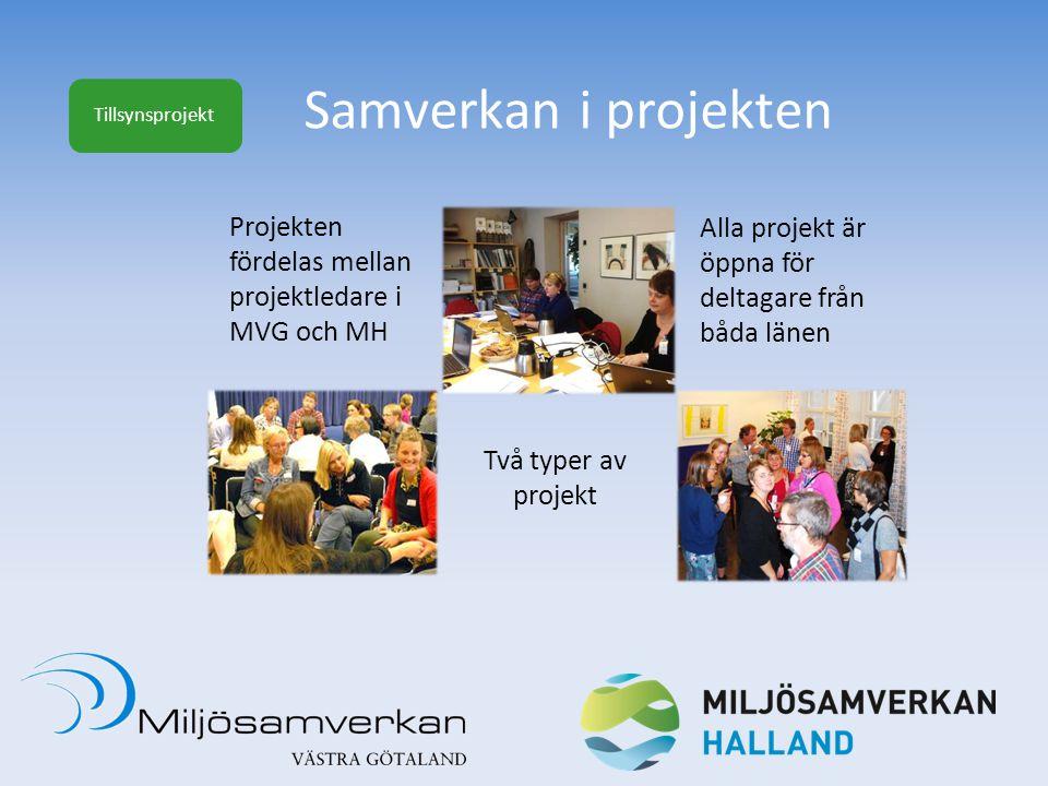 Samverkan i projekten Projekten Alla projekt är fördelas mellan