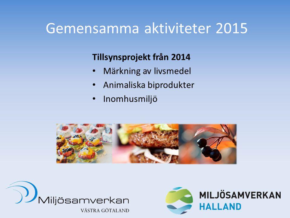 Gemensamma aktiviteter 2015