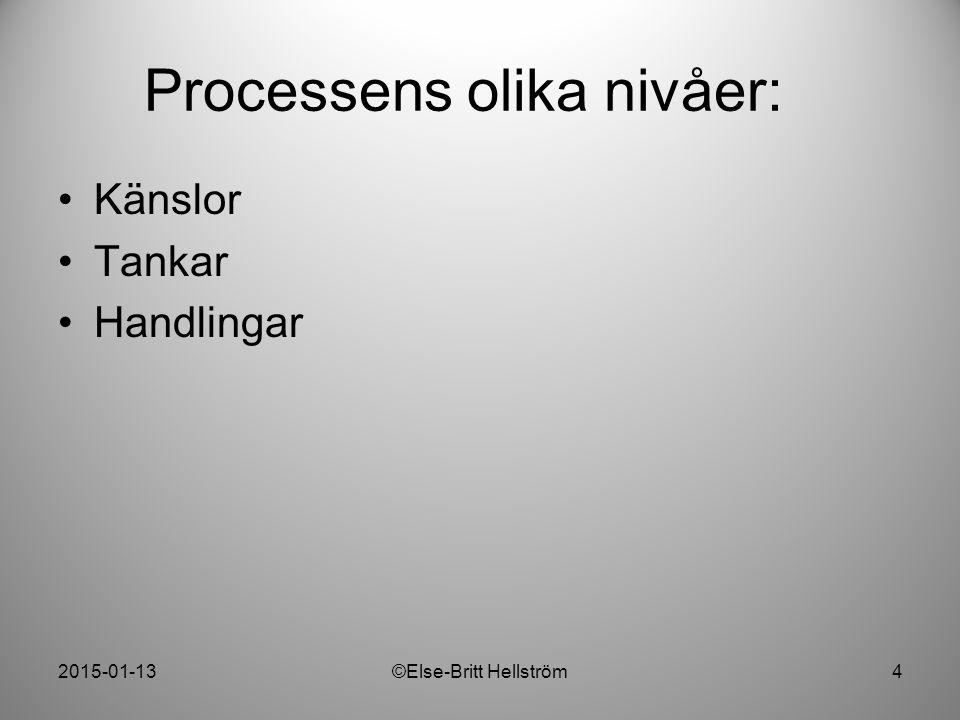 Processens olika nivåer: