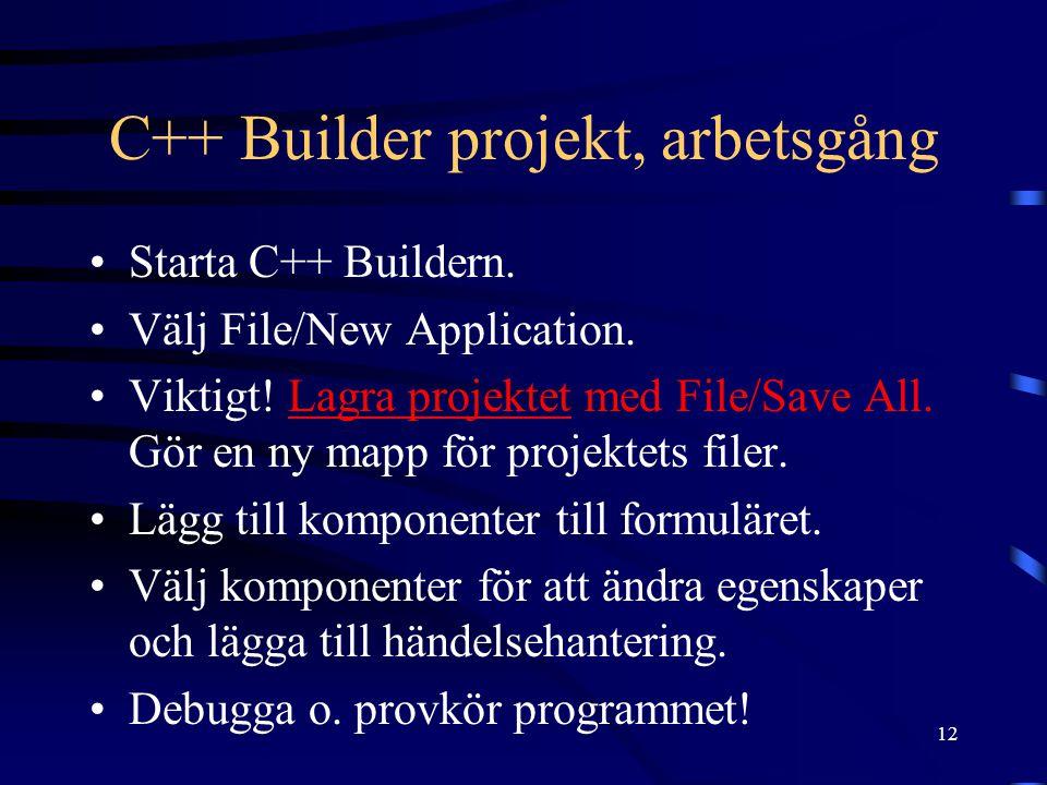 C++ Builder projekt, arbetsgång
