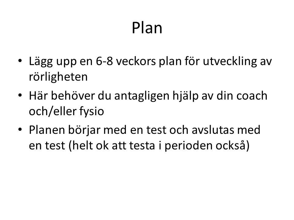 Plan Lägg upp en 6-8 veckors plan för utveckling av rörligheten