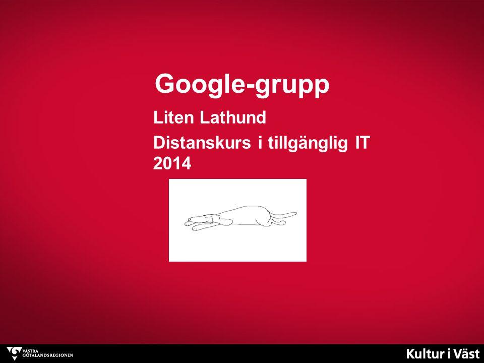 Liten Lathund Distanskurs i tillgänglig IT 2014