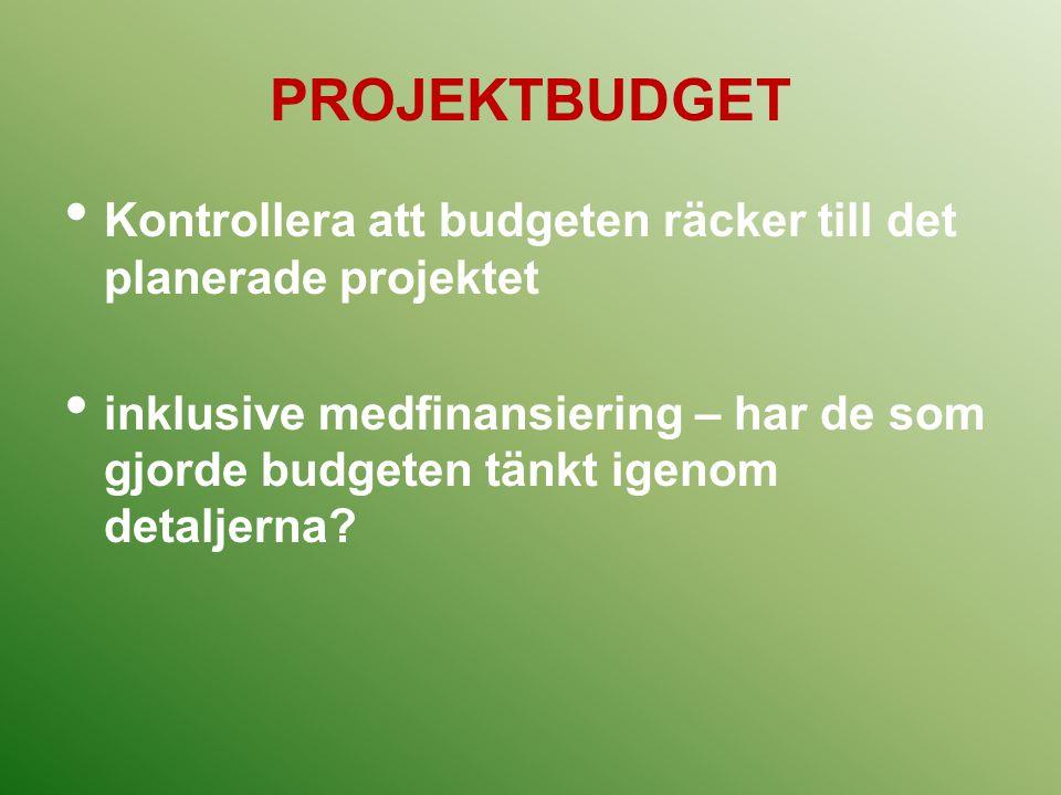 PROJEKTBUDGET Kontrollera att budgeten räcker till det planerade projektet.