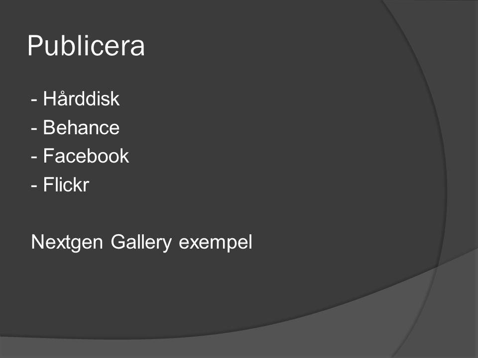 Publicera - Hårddisk - Behance - Facebook - Flickr