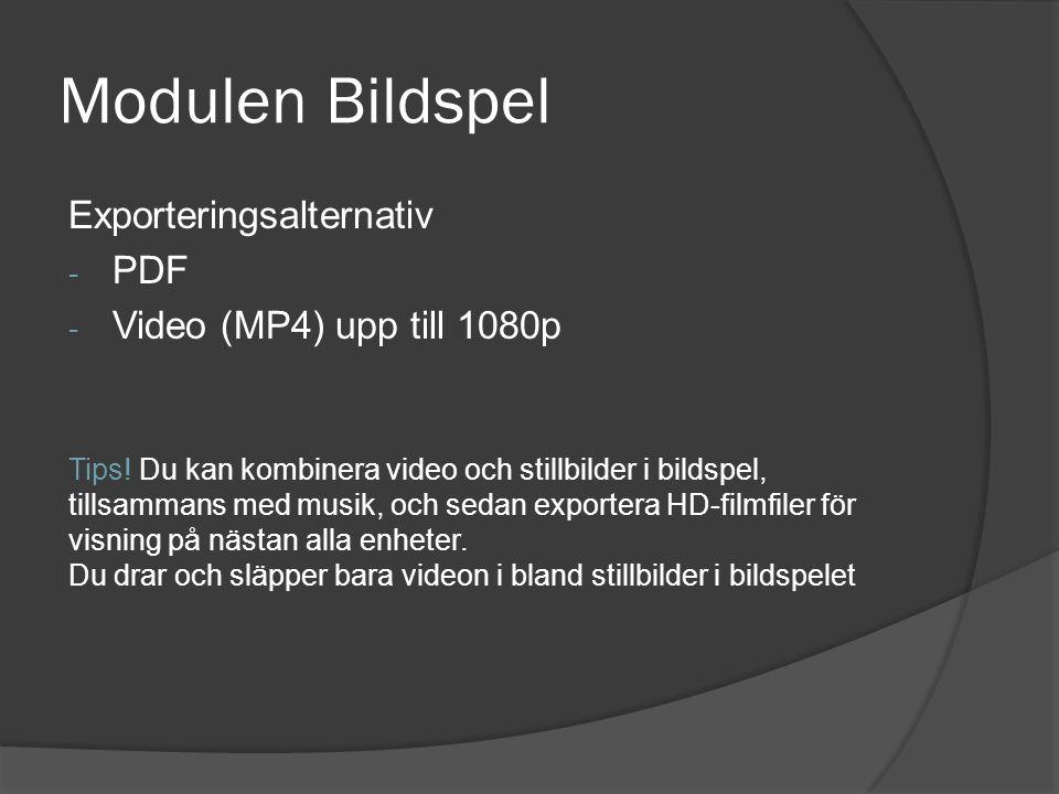 Modulen Bildspel Exporteringsalternativ PDF Video (MP4) upp till 1080p