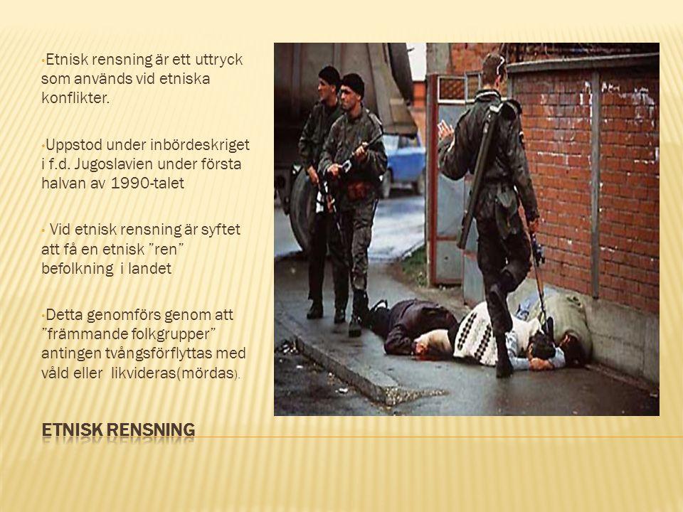 Etnisk rensning är ett uttryck som används vid etniska konflikter.