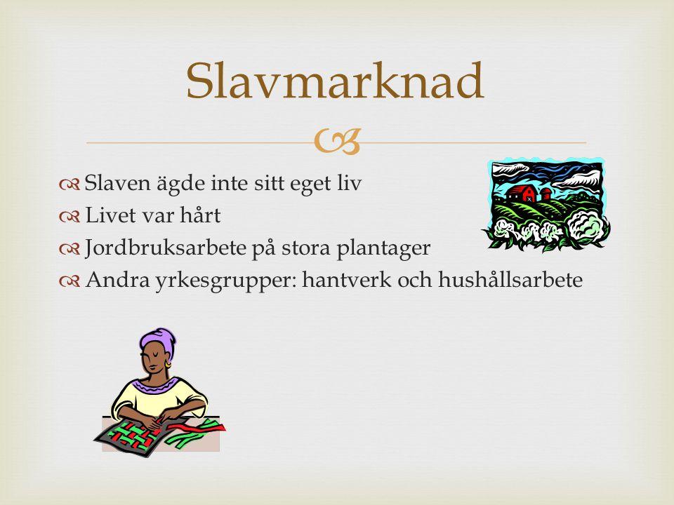 Slavmarknad Slaven ägde inte sitt eget liv Livet var hårt