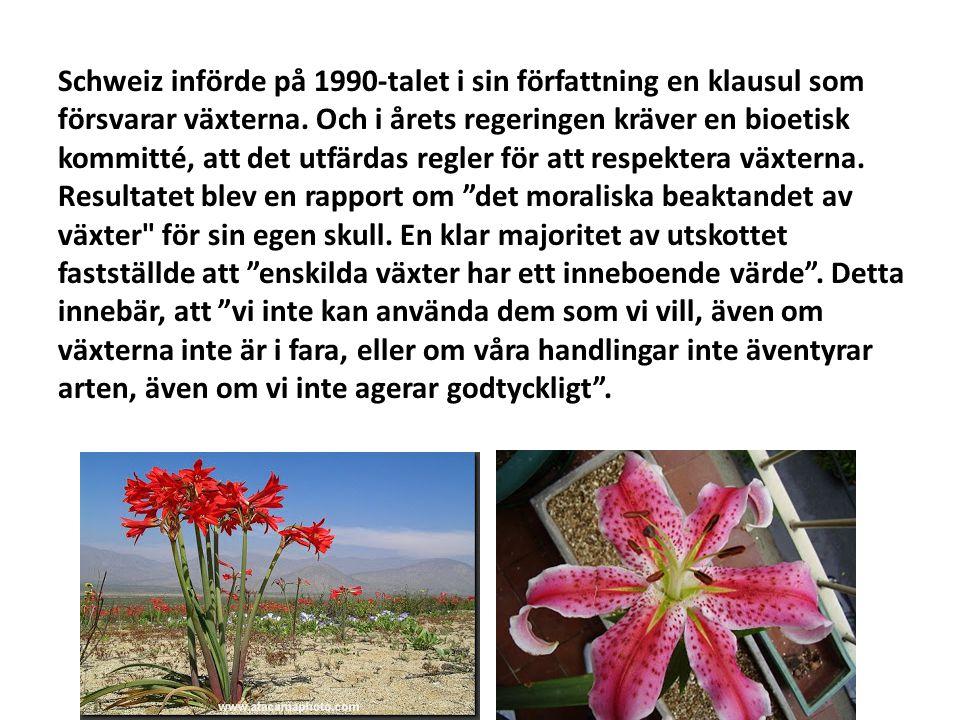 Schweiz införde på 1990-talet i sin författning en klausul som försvarar växterna.