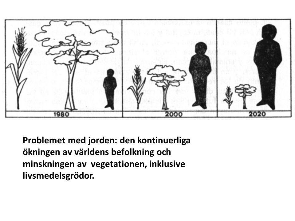 Problemet med jorden: den kontinuerliga ökningen av världens befolkning och minskningen av vegetationen, inklusive livsmedelsgrödor.