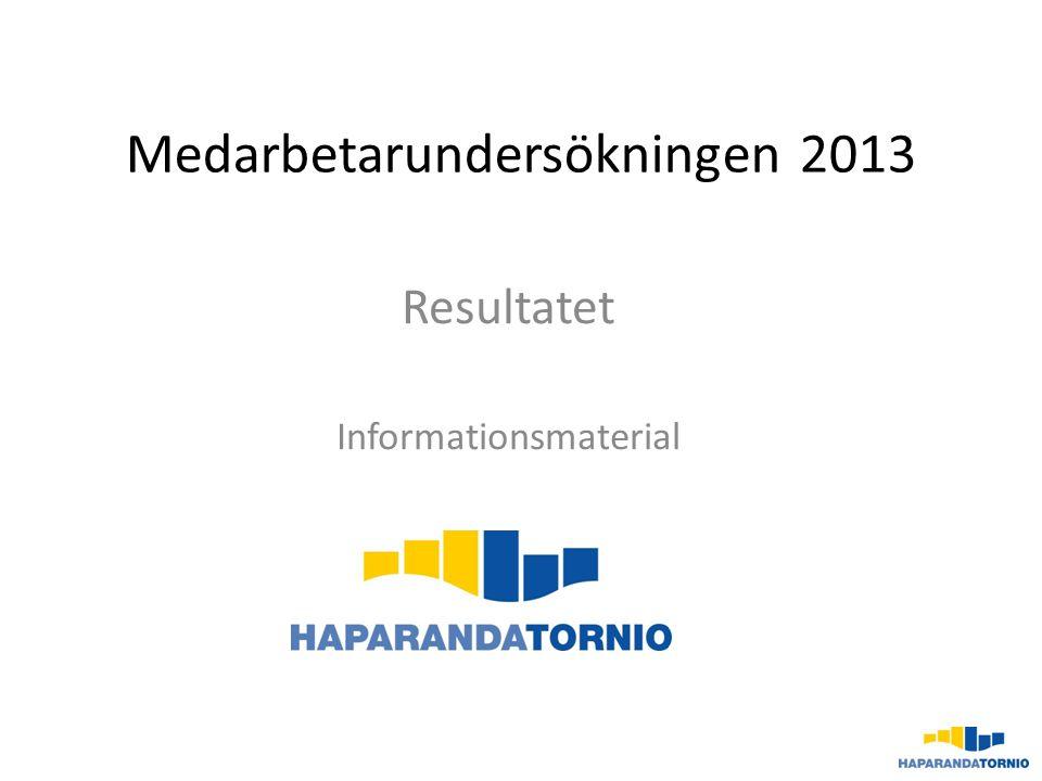 Medarbetarundersökningen 2013
