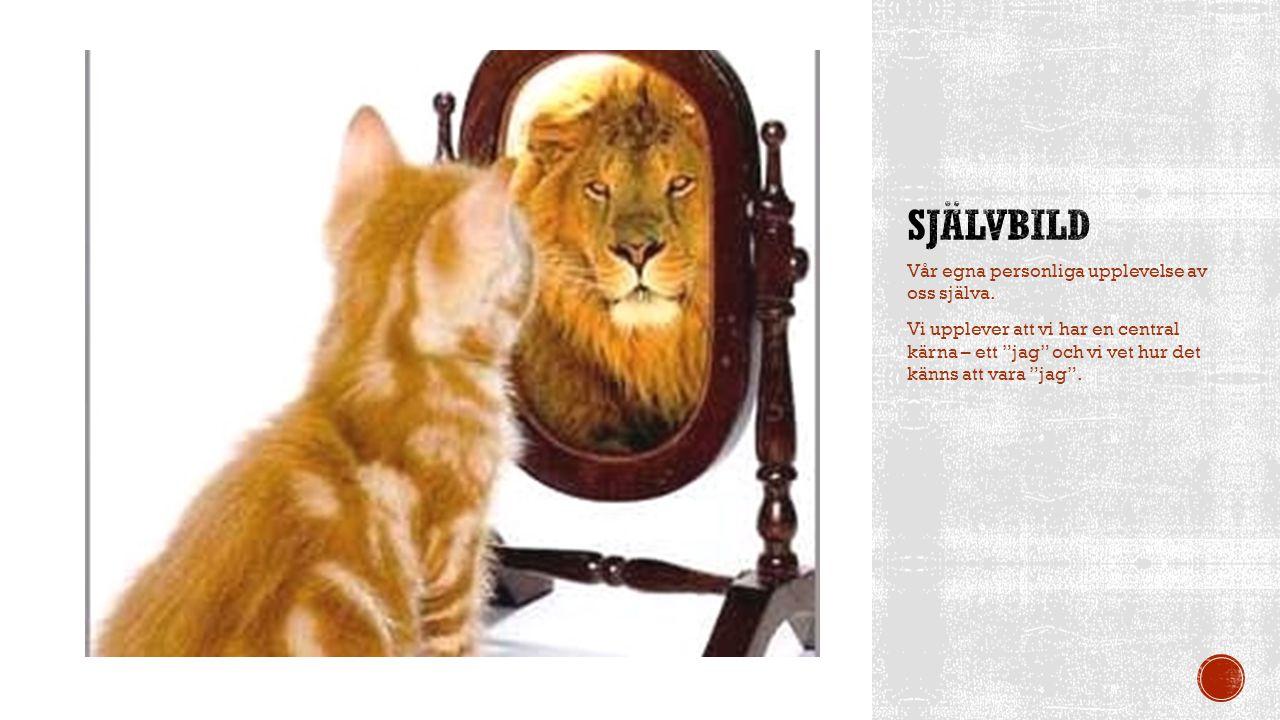 Självbild Vår egna personliga upplevelse av oss själva.