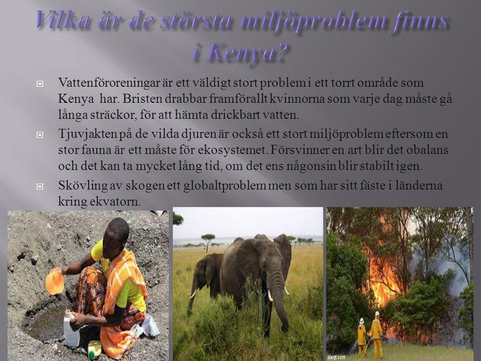 Vilka är de största miljöproblem finns i Kenya