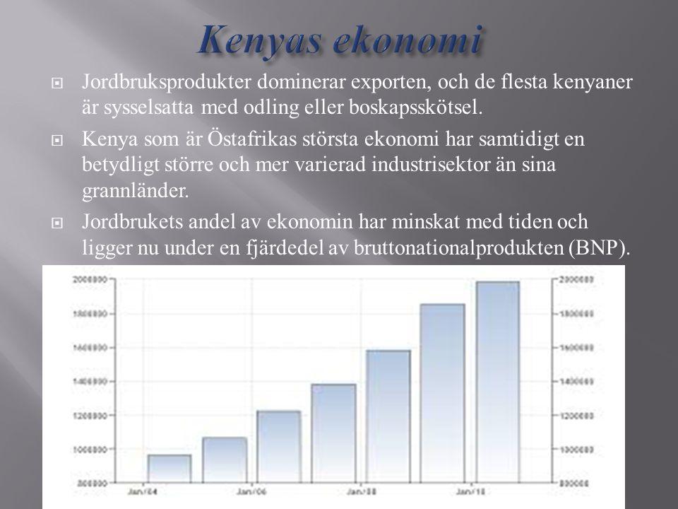 Kenyas ekonomi Jordbruksprodukter dominerar exporten, och de flesta kenyaner är sysselsatta med odling eller boskapsskötsel.