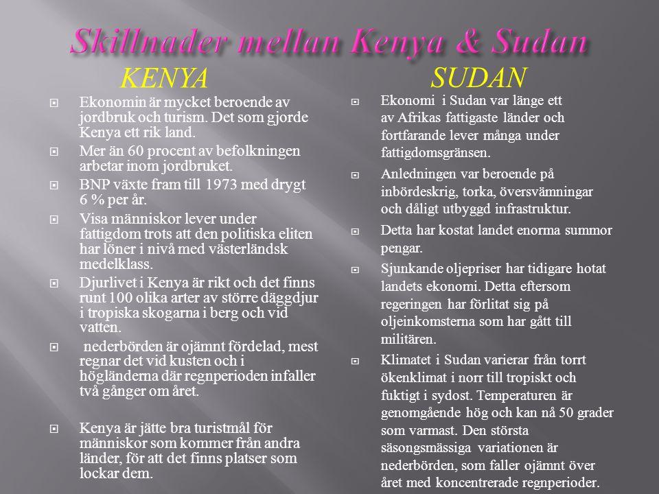 Skillnader mellan Kenya & Sudan