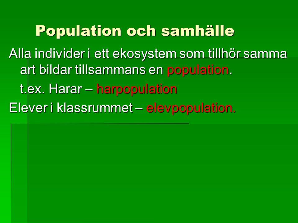 Population och samhälle