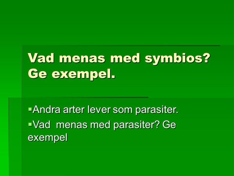 Vad menas med symbios Ge exempel.