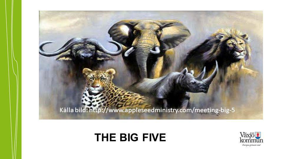 Källa bild: http://www.appleseedministry.com/meeting-big-5