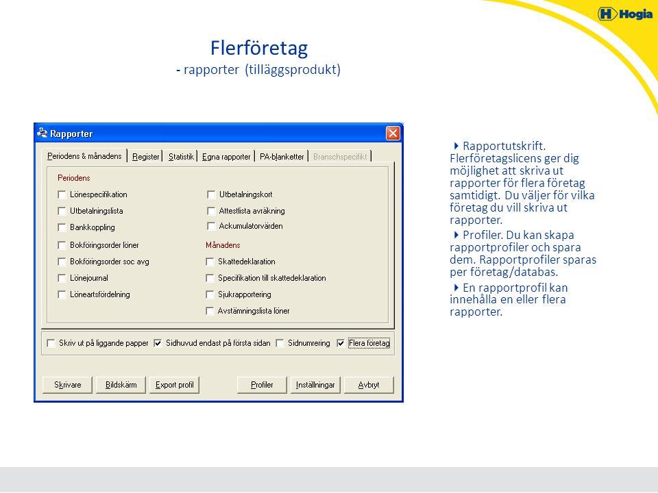 Flerföretag - rapporter (tilläggsprodukt)