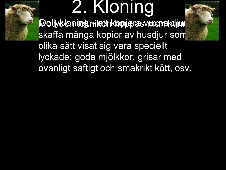 2. Kloning Dollykloning - att kopiera vuxna djur
