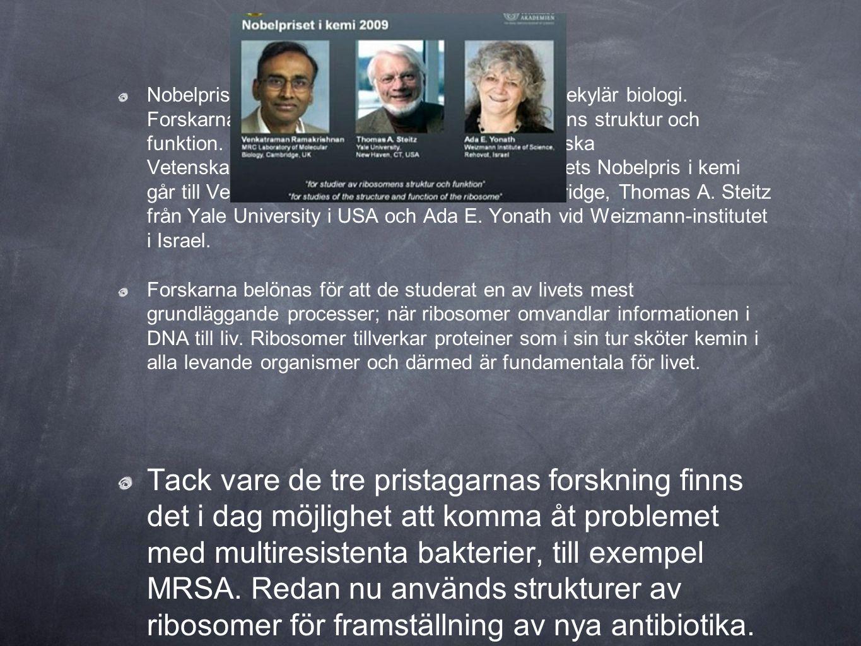 Nobelpriset i kemi går i år till forskare inom molekylär biologi