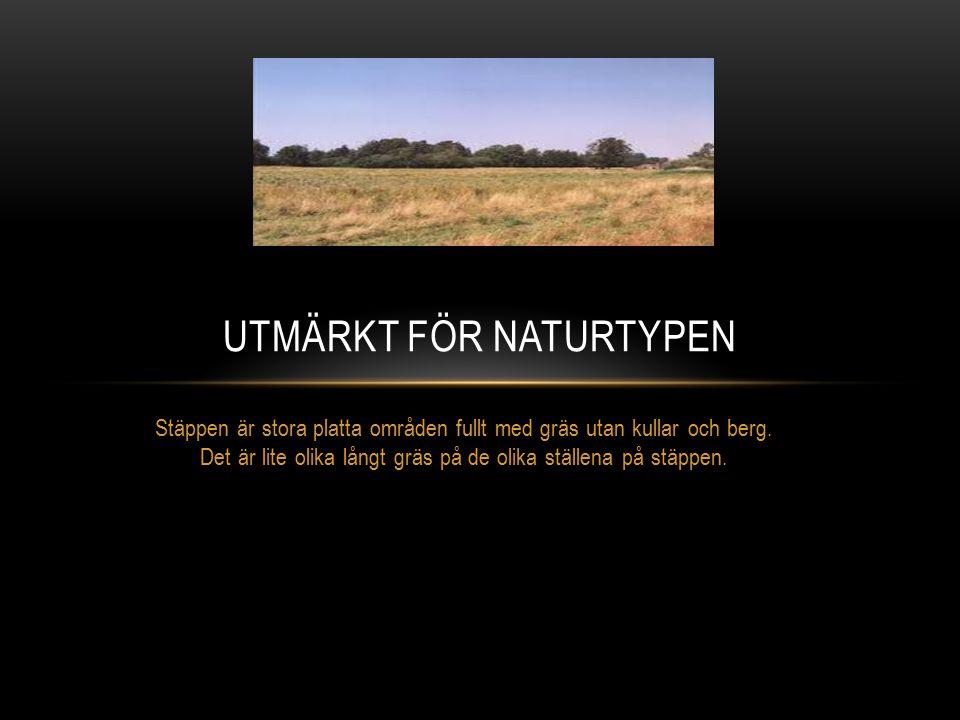 Utmärkt för naturtypen