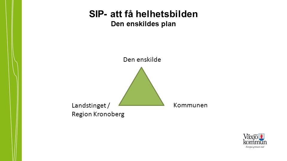 SIP- att få helhetsbilden Den enskildes plan