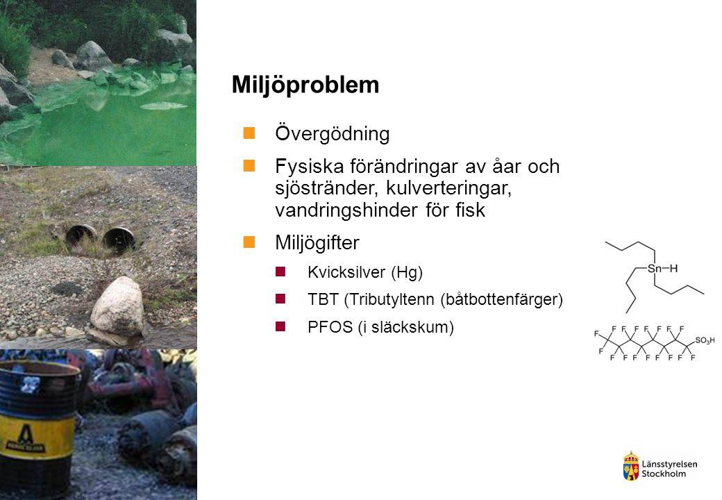 Miljöproblem Övergödning