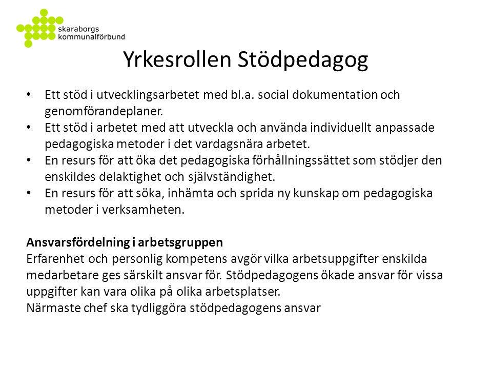 Yrkesrollen Stödpedagog