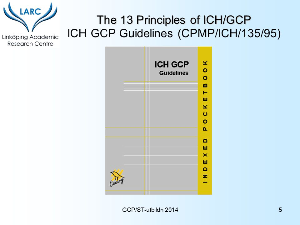 The 13 Principles of ICH/GCP ICH GCP Guidelines (CPMP/ICH/135/95)