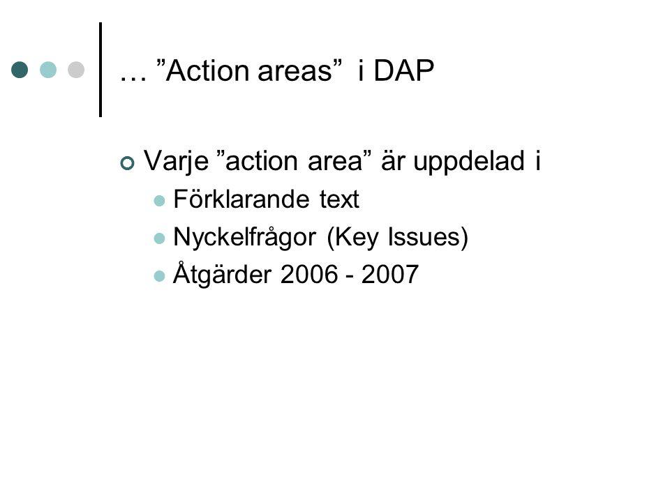 … Action areas i DAP Varje action area är uppdelad i