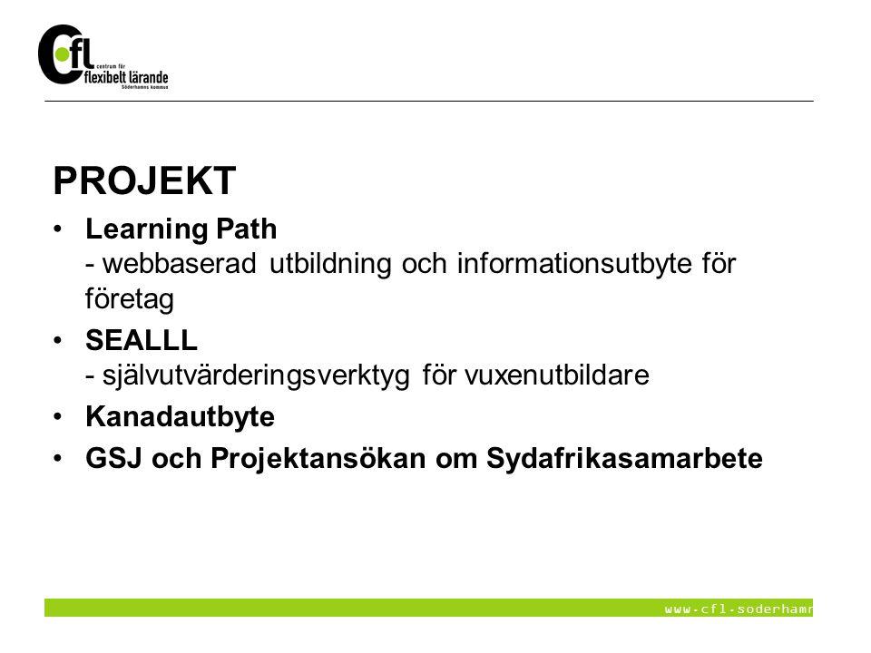 PROJEKT Learning Path - webbaserad utbildning och informationsutbyte för företag. SEALLL - självutvärderingsverktyg för vuxenutbildare.