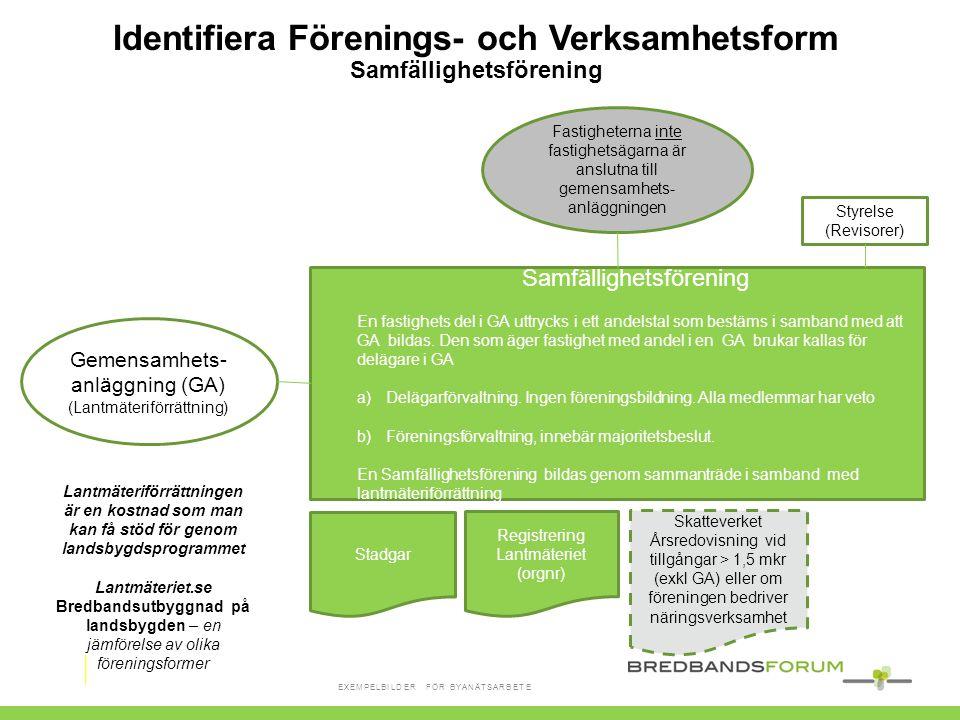 Identifiera Förenings- och Verksamhetsform Samfällighetsförening