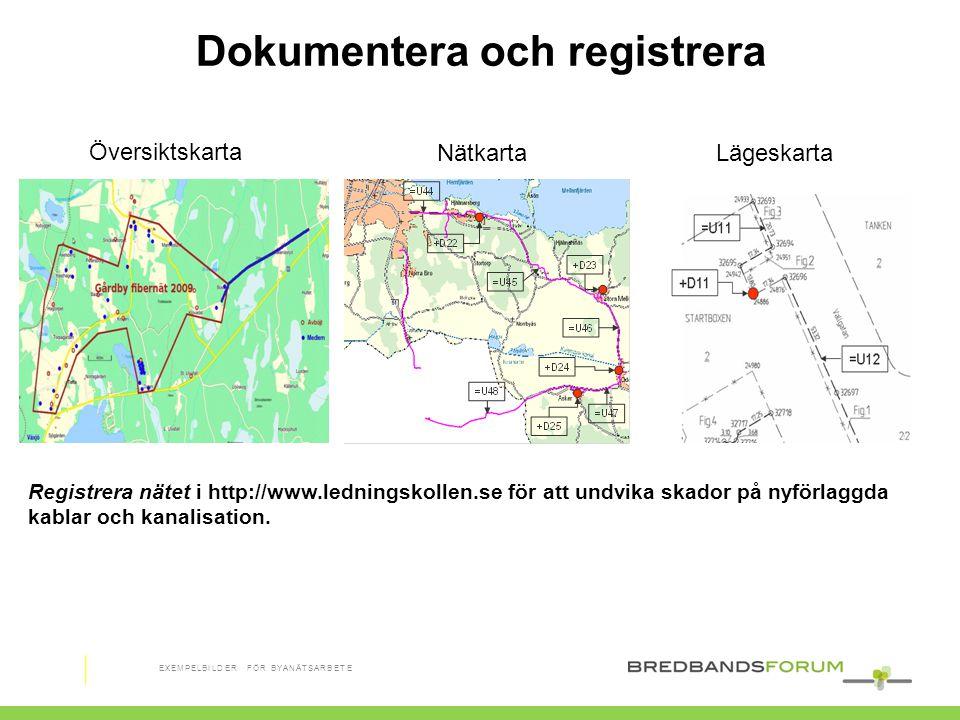 Dokumentera och registrera