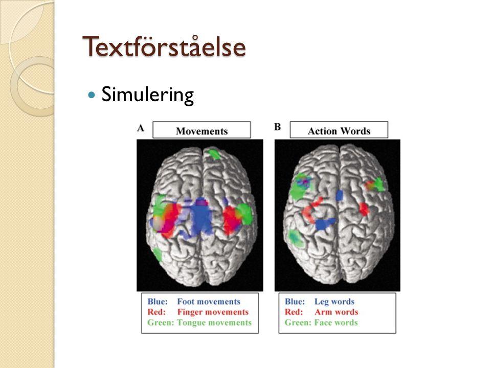 Textförståelse Simulering