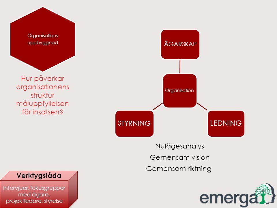 Hur påverkar organisationens struktur måluppfyllelsen för insatsen