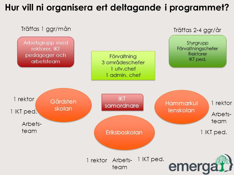 Hur vill ni organisera ert deltagande i programmet