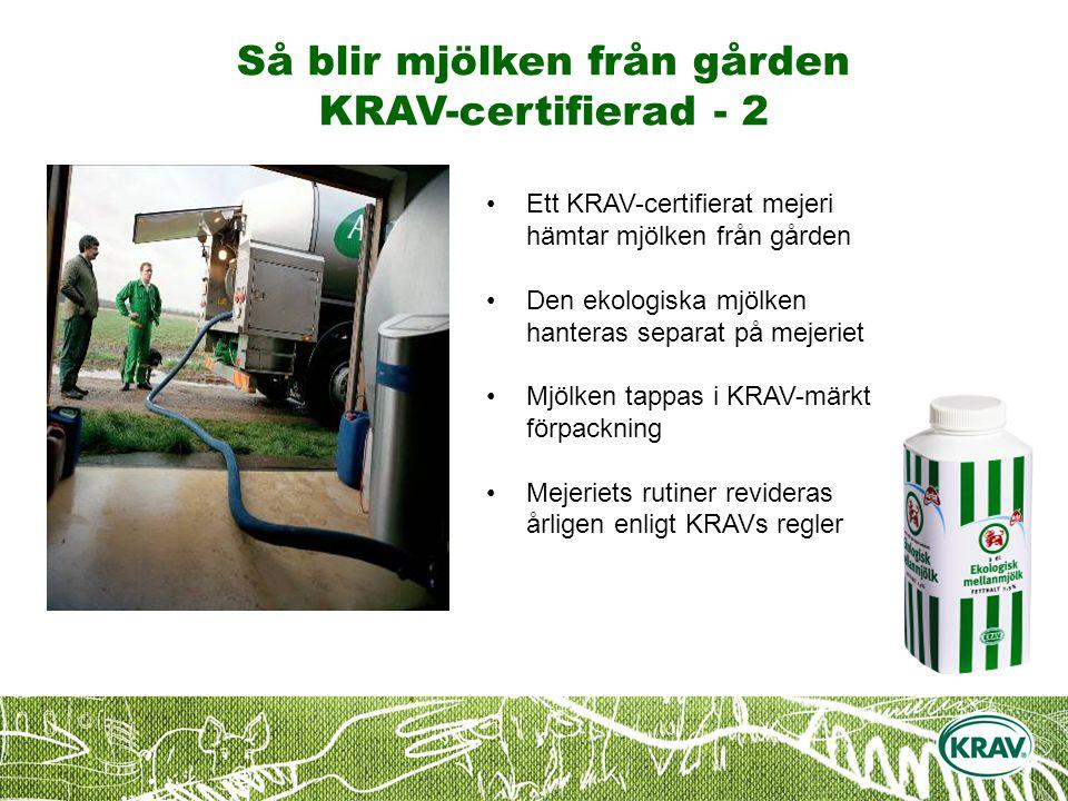 Så blir mjölken från gården KRAV-certifierad - 2